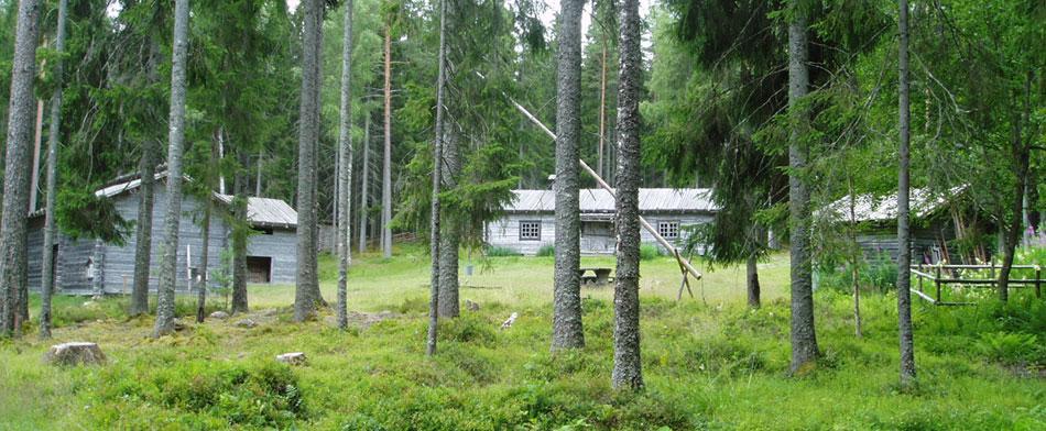 Finnstigen-i-Bredsjö,-Finngården-web-hemsida-1